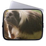 Cotton Topped Tamarin Monkey Computer Sleeve
