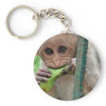Funny Monkey Picture Keychain